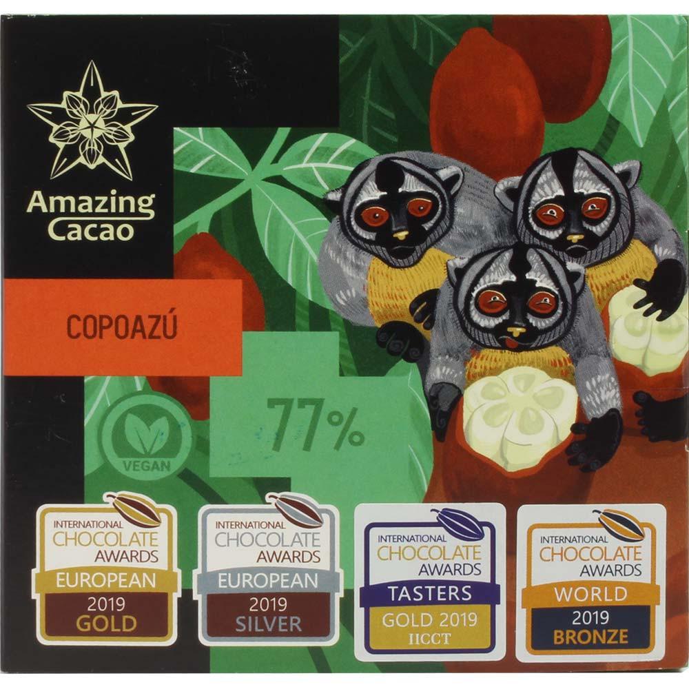 Copoazú 77% dunkle Premium Schokolade - Barras de chocolate, chocolate sin gluten, chocolate vegano, Rusia, chocolate ruso, chocolate puro sin ingredientes - Chocolats-De-Luxe