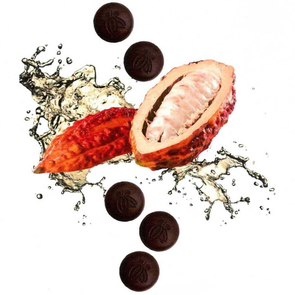 Cacao Fruit Couverture 78% cioccolato con succo di frutta cacao - Couverture, cioccolato senza zucchero, Svizzera, Cioccolato svizzero, Cioccolato con succo di frutta al cacao - Chocolats-De-Luxe